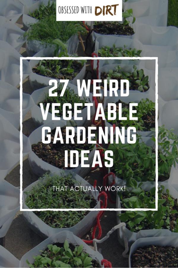 27 of the best vegetable garden ideas using recycled materials that you can find anywhere. Make your own fertilizer and weed killers, grow more food in small spaces and more vegetable garden ideas! Check it out #vegetablegarden #thehappygardeninglife #urbanorganicgardener #organicgardening