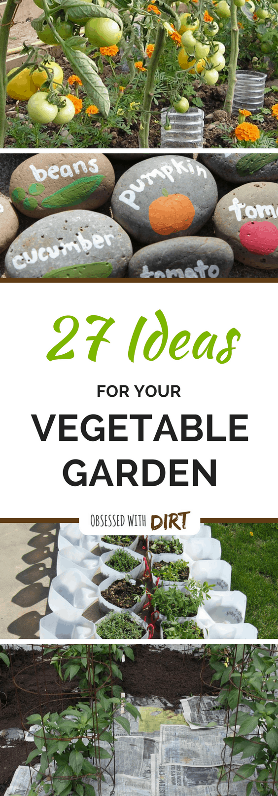 27 vegetable garden ideas to grow more food in small backyards for Food garden ideas