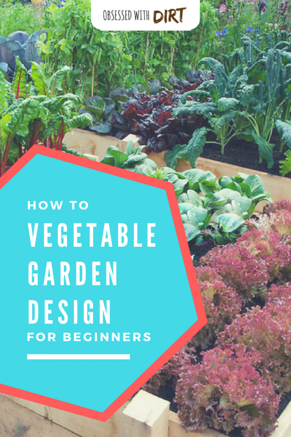 Starting a new vegetable garden can feel overwhelming. Proper vegetable garden design takes research, planning and plenty of experience. That's why we've put together this cheat sheet of the best vegetable garden designs for backyard and beginner vegetable gardeners. Check it out! #growyourownfood #vegetablegarden #organicgardening #urbanfarming