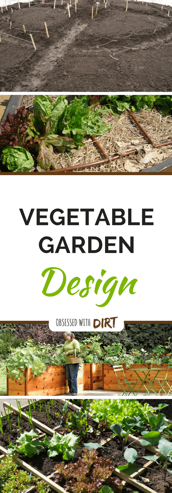 vegetable garden design how to plant your veggie patch - Garden Design Vegetable Patch