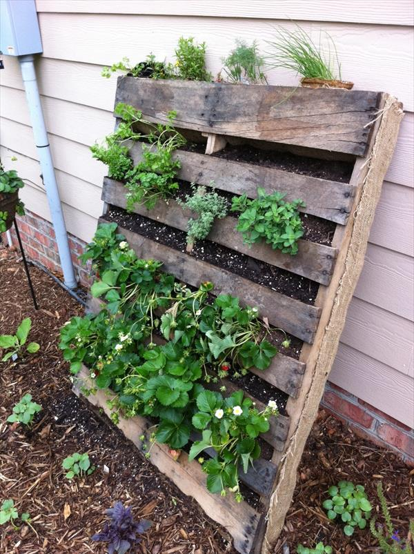 Recycled Pallet Garden