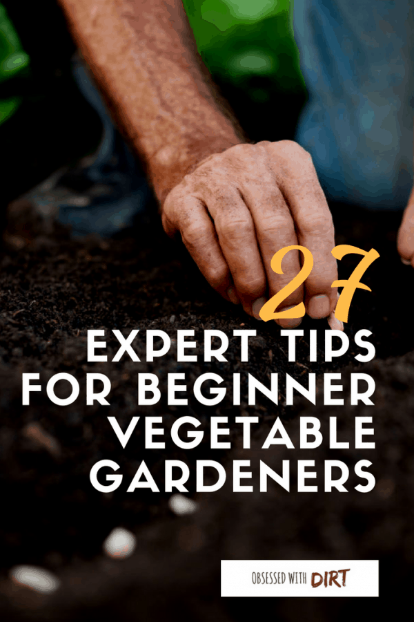 When you first get into vegetable gardening there's a lot of things to learn. It's a steep learning curve for many new gardeners. That's why we've created this big list of tips for vegetable gardening for beginners. You'll learn all those little things that come with experience. Things like keeping detailed records of your crops and labeling plants so you know who's who when it comes to harvest time. So what are you waiting for? It's time to get diggin' #growyourownfood #thehappygardeninglife #homegarden #urbanfarming