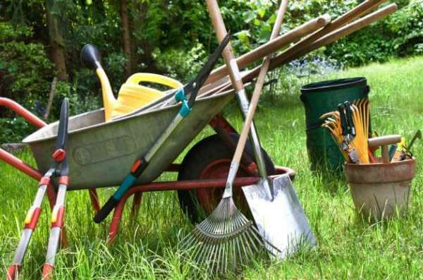 15 Essential Gardening Tool For Small Organic Gardens