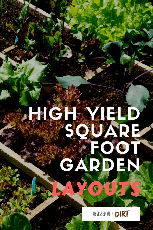 Learn everything you need to know about square foot gardening. Plus get free layouts to the best square foot gardening plans for <a href=