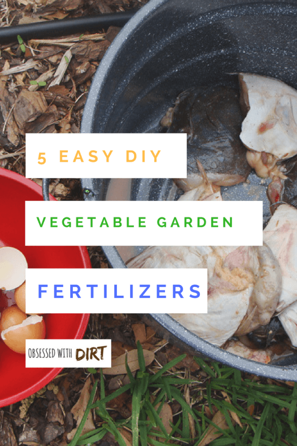 The basics of growing a healthy garden require you to keep your soil properly fertilized so that all seeds can bloom into healthy plants. Vegetable Garden Fertilizers supplement these nutrient needs of plants promoting crop yield. #thehappygardeninglife #greenthumb #urbanfarming #homegarden
