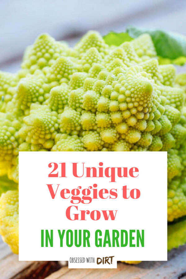 unique veggies to grow