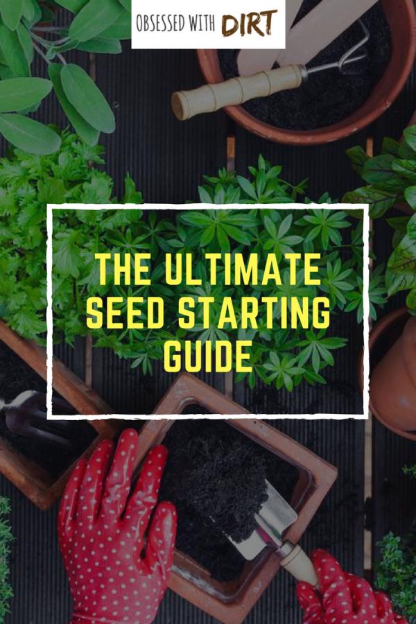 seed starting tricks