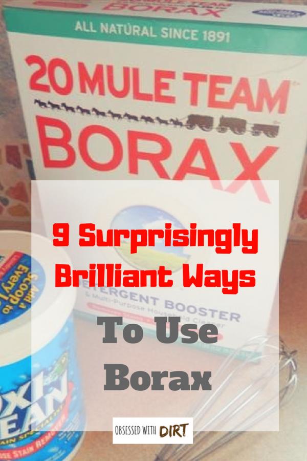 9 ways to use borax