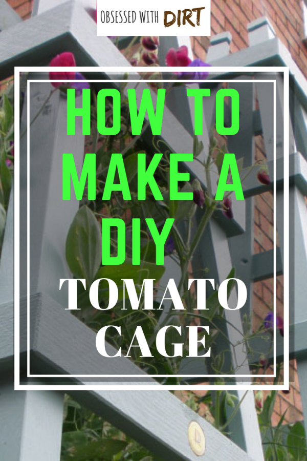 How to make a DIY tomato cage