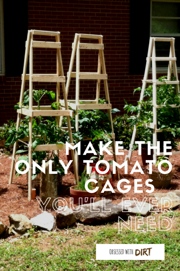 tomato cages you'll ever need