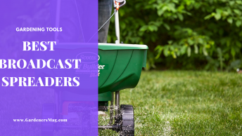 Best Broadcast Spreader