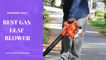 Best Gas Leaf blower